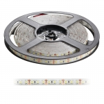 LED Strip SMD 2835 120 LED/M 12V IP65 12W