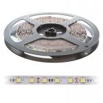 LED Strip SMD 5050 60 LED/M 12V IP20 14,4